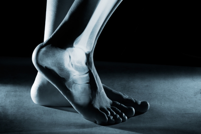 Squelette pied osteopathie